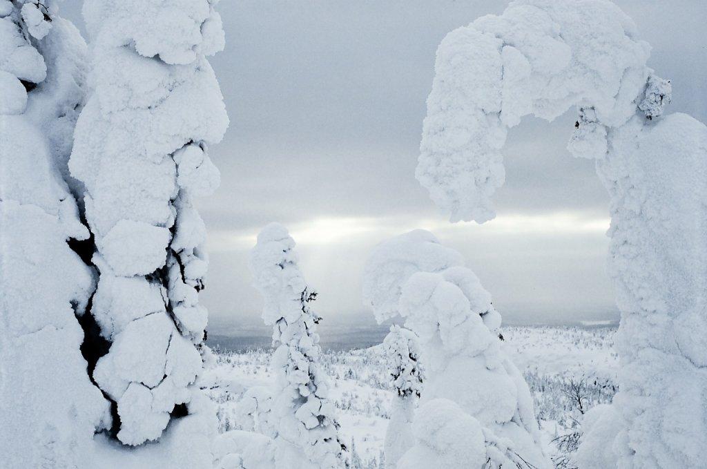 Вид через облепленные снежным настом ели со склона горы Киваккатунтури