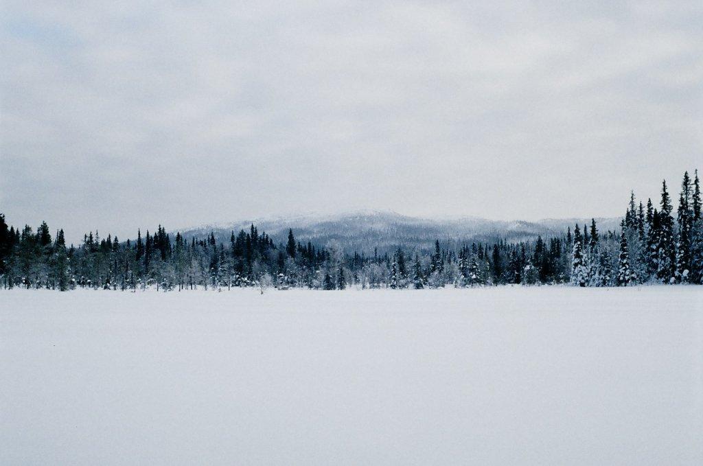 Вид на гору Кивакка через болота