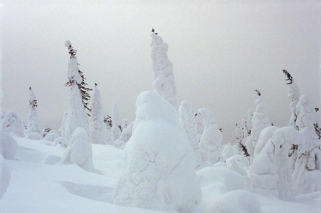 На склоне горы Нуорунен