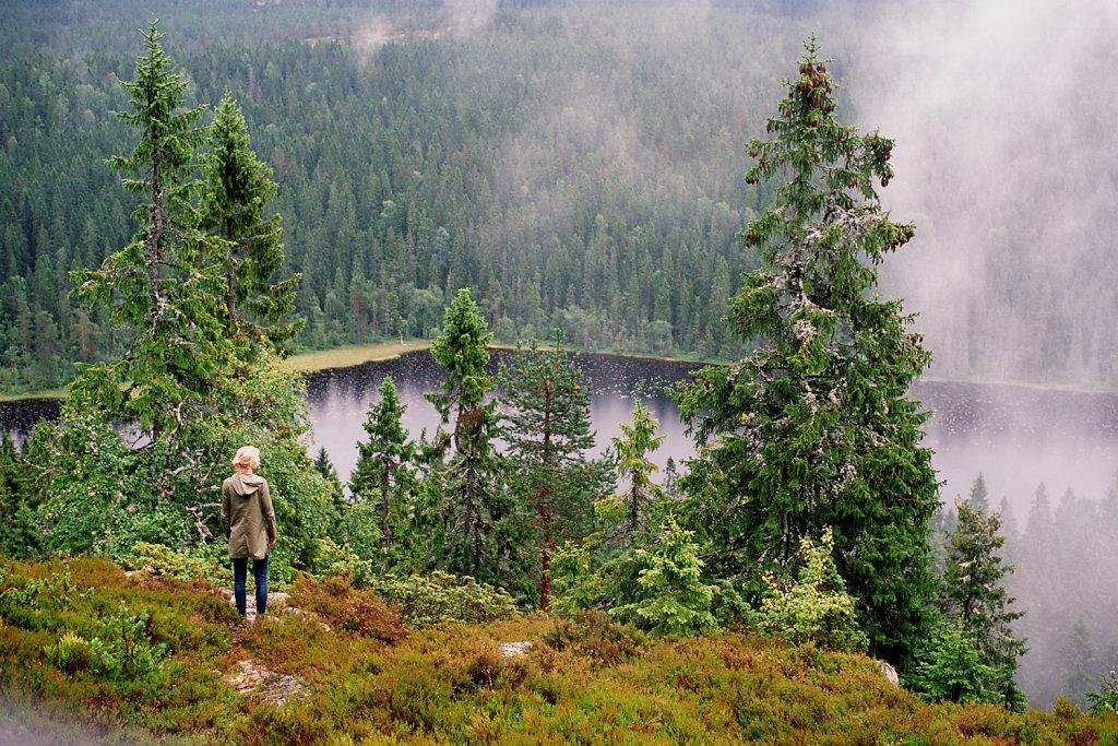 Высокий берег   Hoga Kusten