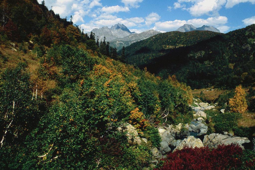 Псху-Гумистский заповедник   Abhazia wilderness