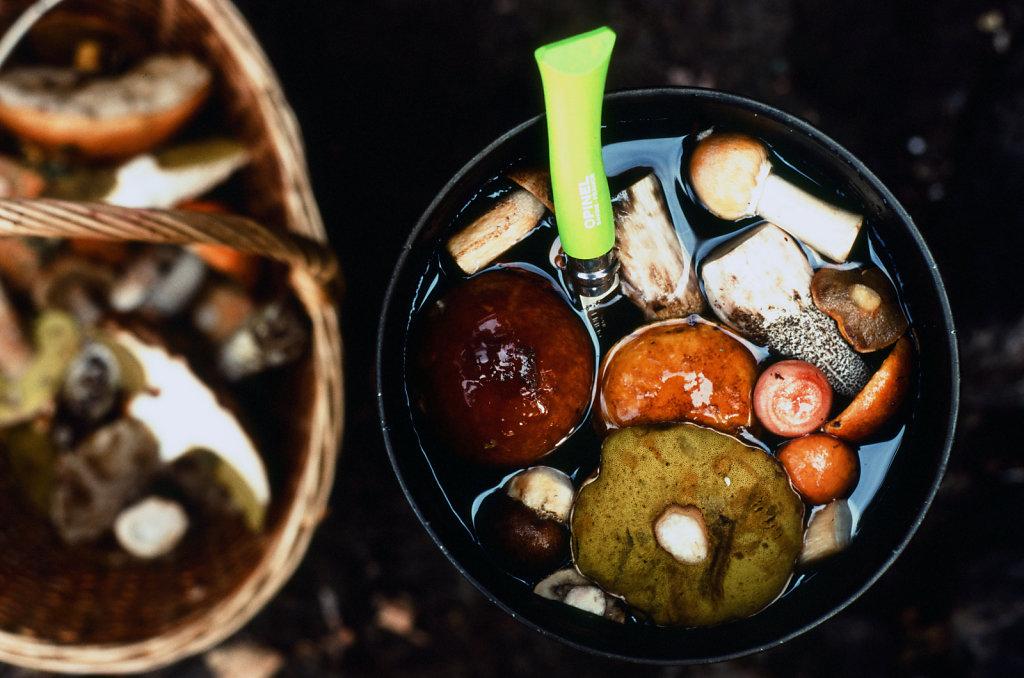 leivonmaki-color-07.jpg