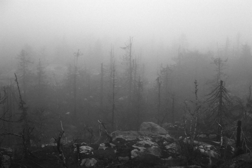 fog-vottovaara-blog-02.jpg