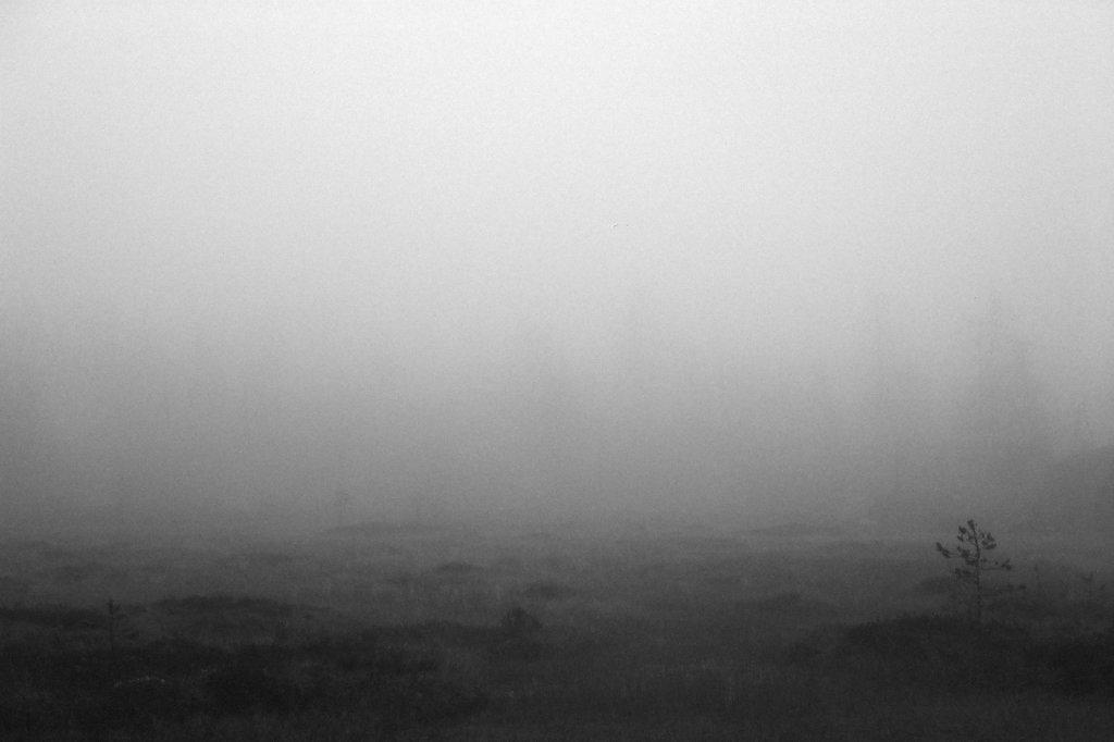 fog-vottovaara-blog-05.jpg
