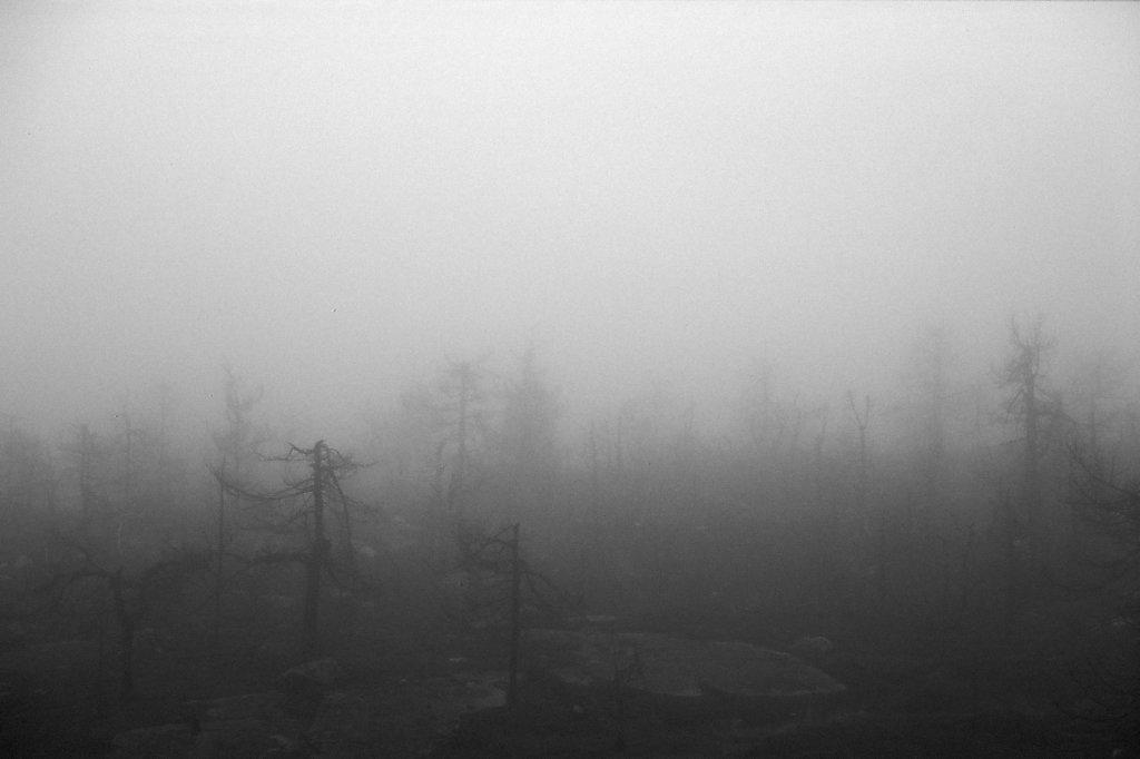 fog-vottovaara-blog-08.jpg