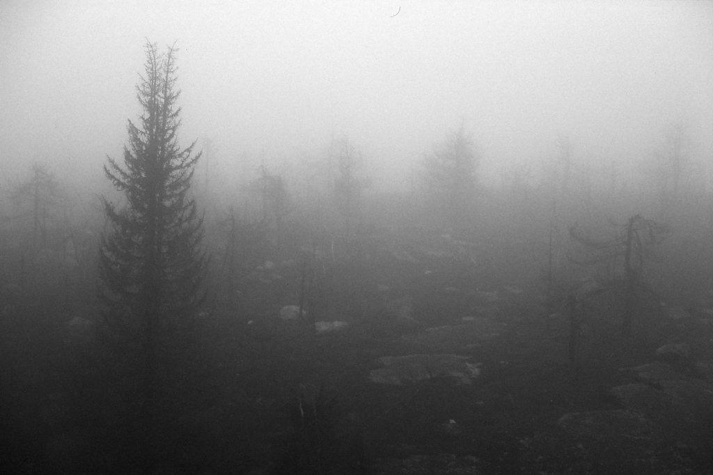 fog-vottovaara-blog-09.jpg