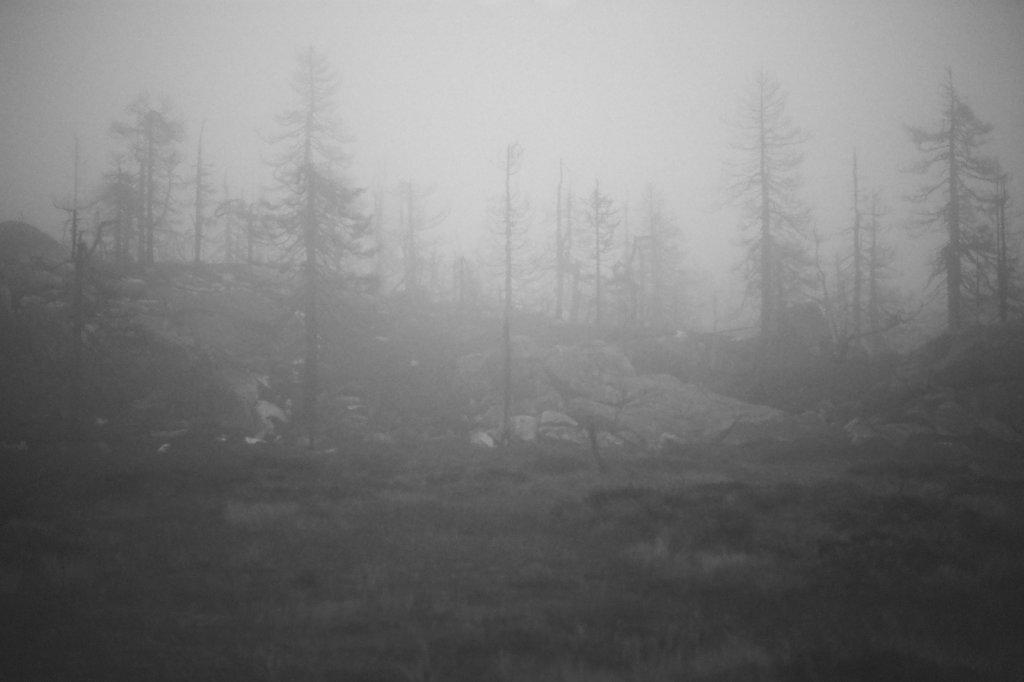 fog-vottovaara-blog-12.jpg