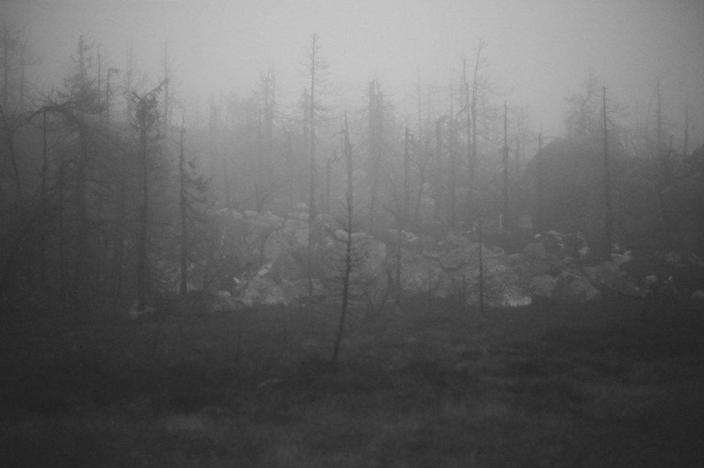fog-vottovaara-blog-13.jpg