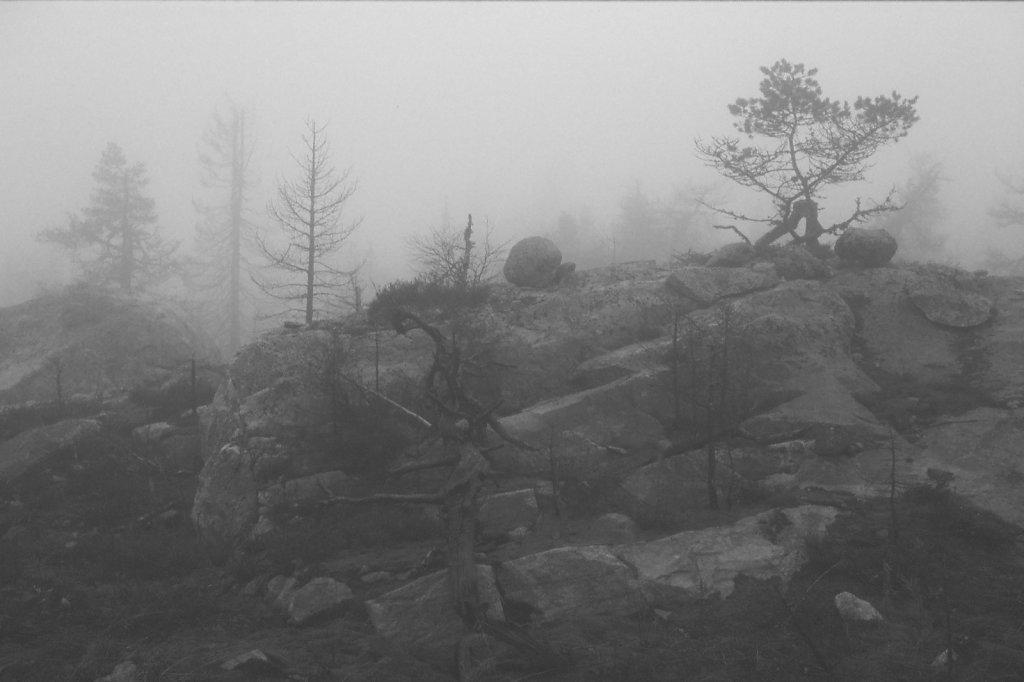 fog-vottovaara-blog-14.jpg