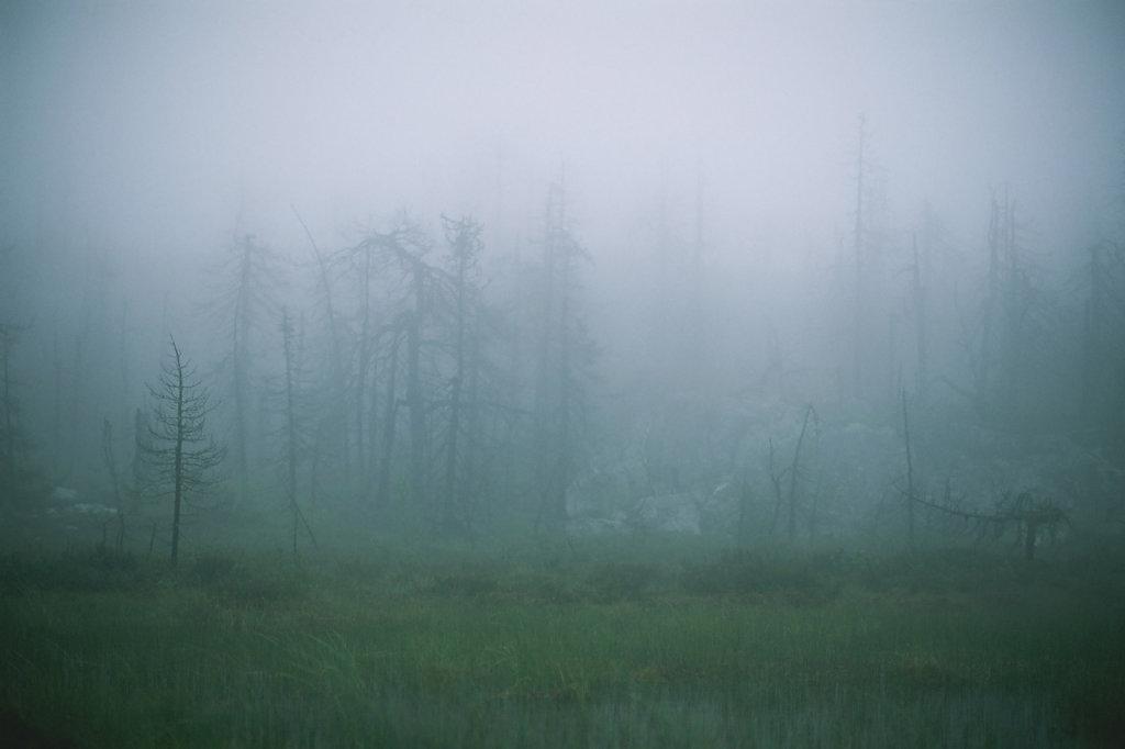 fog-vottovaara-blog-25.jpg