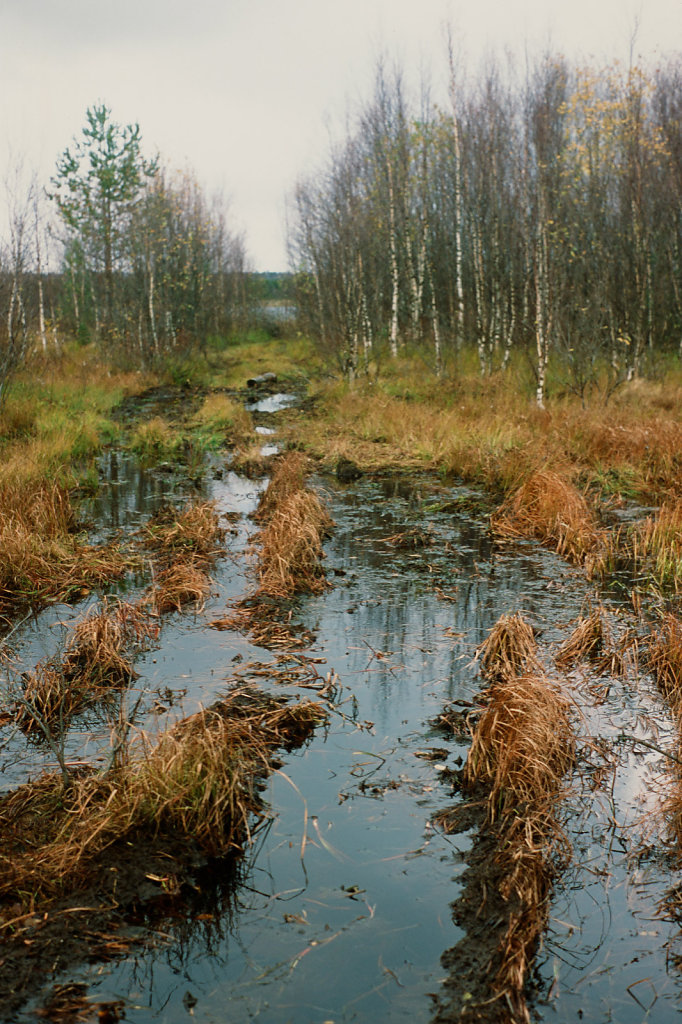 letnii-bereg-slide-08-blog.jpg