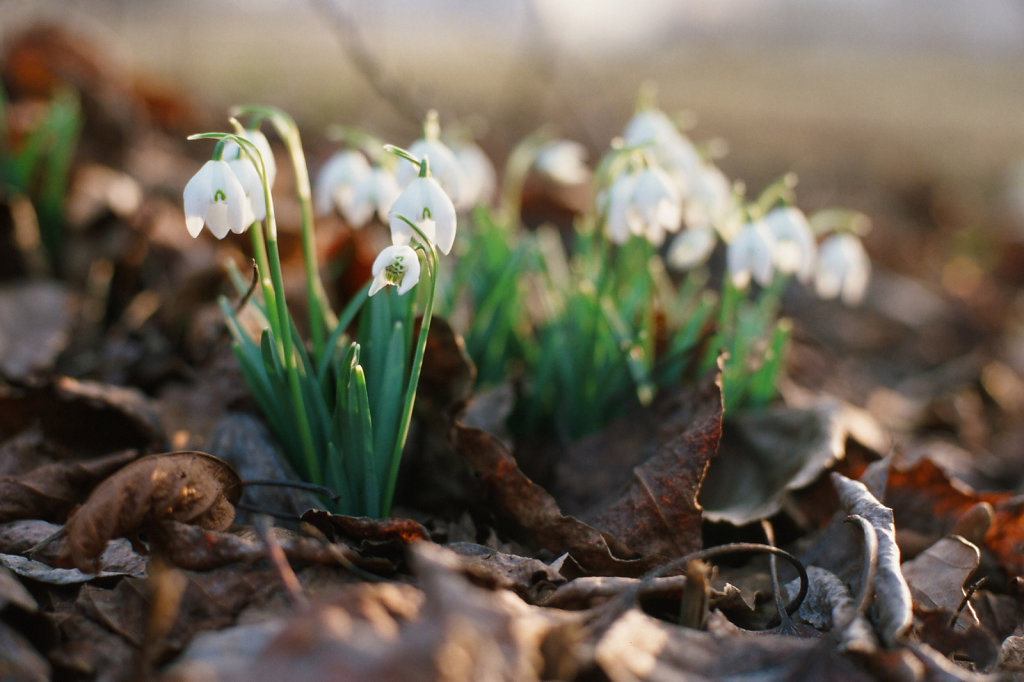 eesti-hiumaa-spring-2014-blog-05.jpg