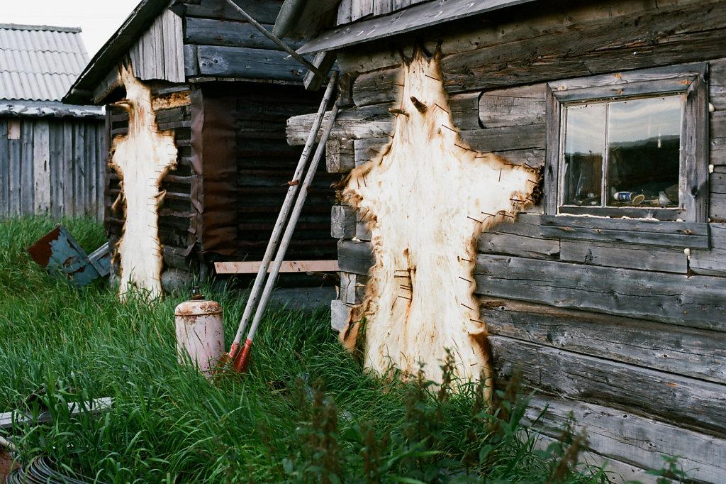 Шкуры на доме в деревне Сосновка