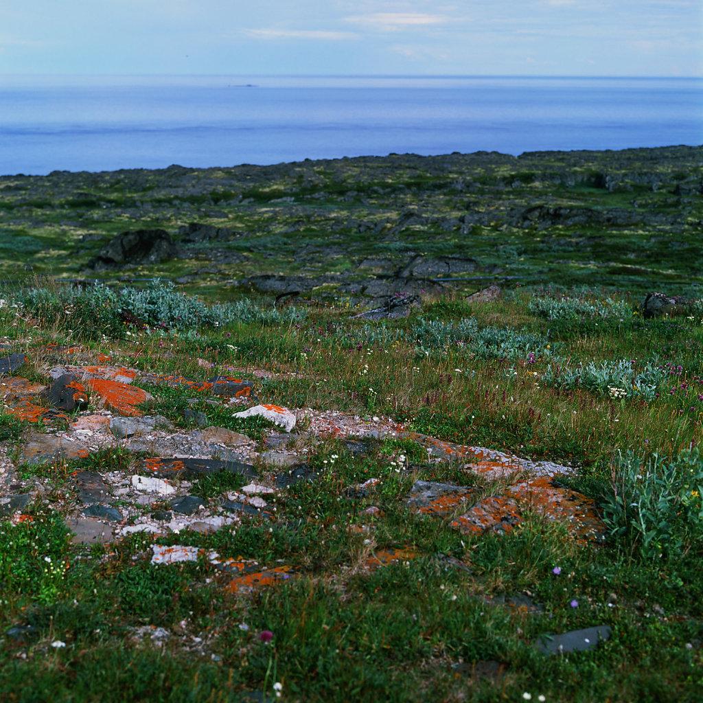 tersky-navalis-coast-blog-005.jpg