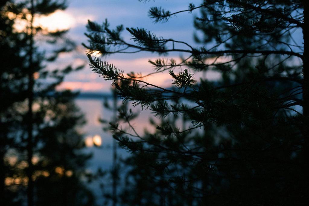 blog-lunas-summer-03.jpg