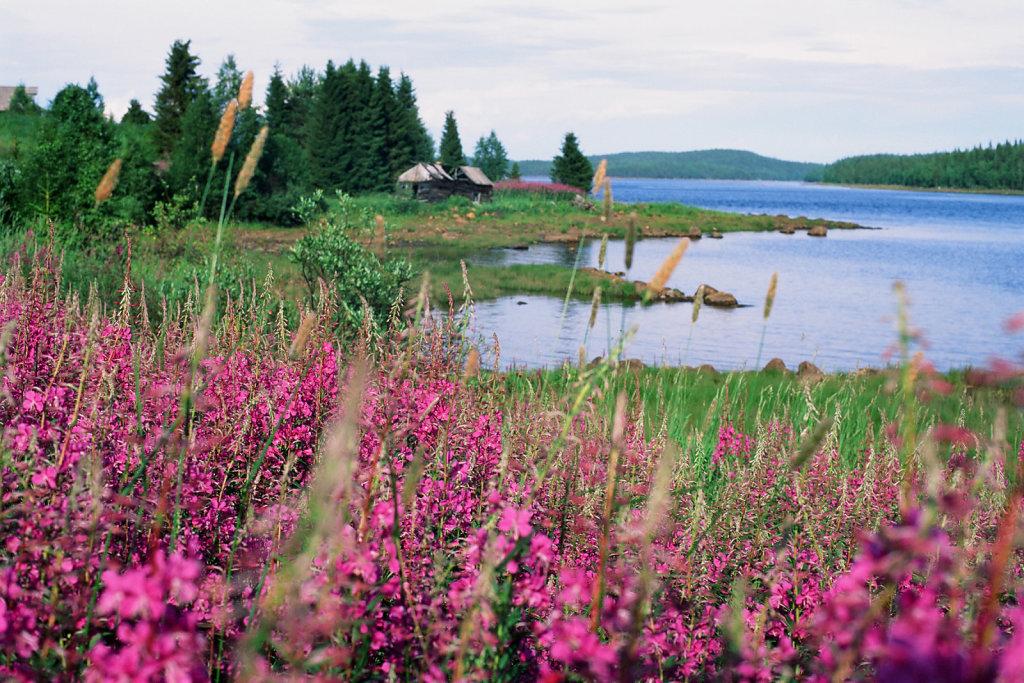 blog-kareliacoast-12.jpg