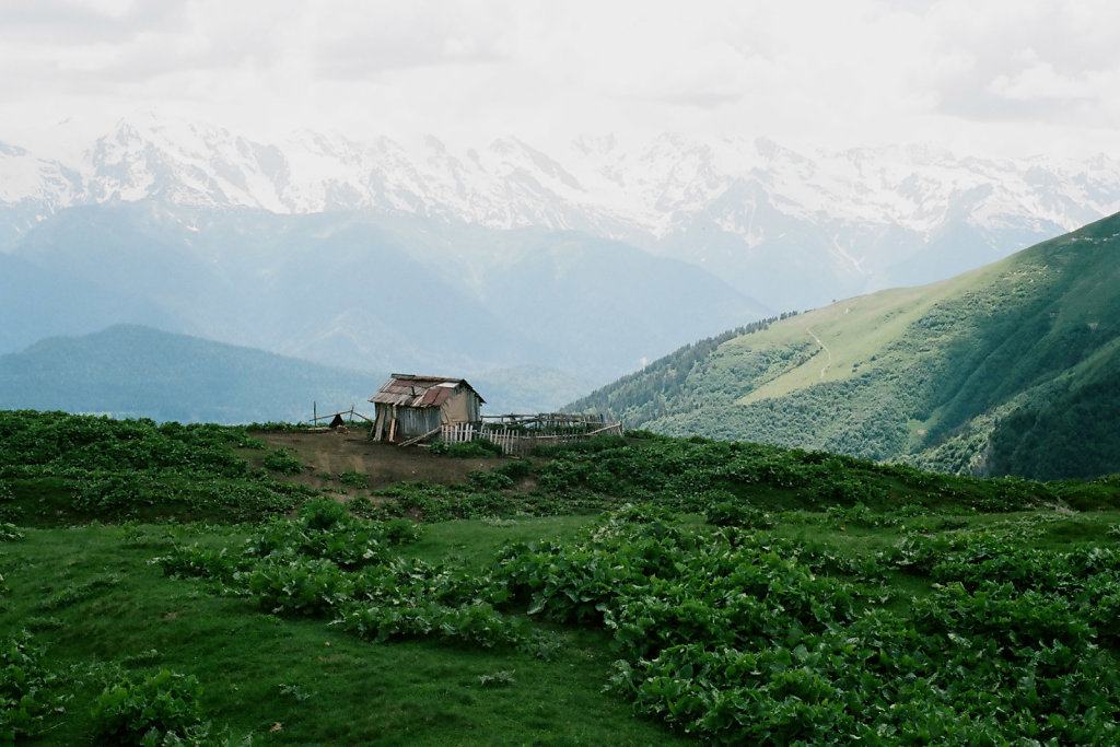 georgia-blog-tushety-50.jpg
