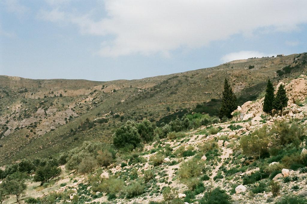 Jordan-452-web.jpg