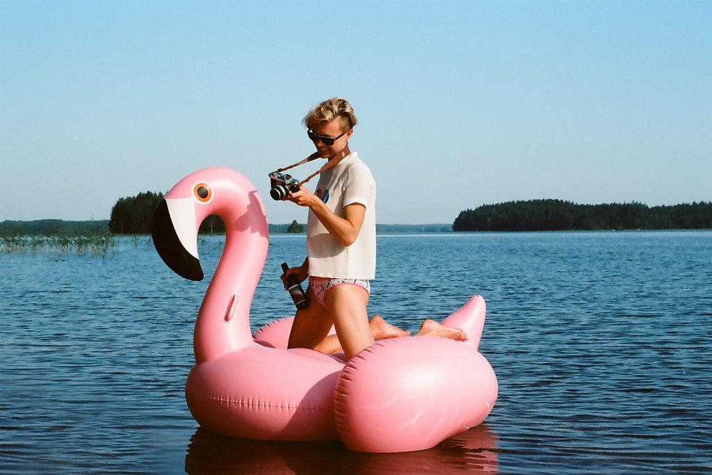 screen-flamingo.jpg